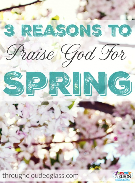 3 Reasons to Praise God for Spring